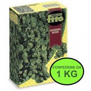sementi-da-prato-dichondra-repens-fito-conf-da-1-kg
